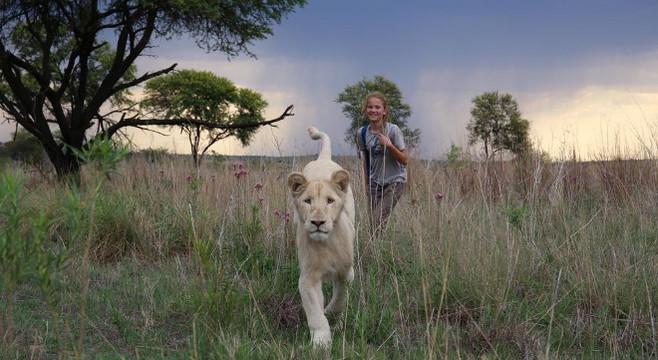 Mia & The White lion